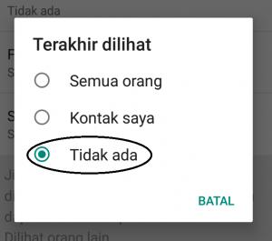 Cara Mudah Terlihat Offline di WhatsApp Padahal Sedang Online