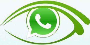 Cara Mudah Lihat Status di Aplikasi WhatsApp Tanpa Diketahui