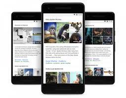 Hasil Pencarian Google Gambar Di Perangkat Mobile Akan Disertai Keterangan