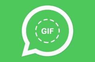 Cara Ubah Video menjadi GIF Dengan WhatsApp