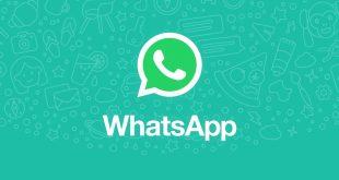 Cara Mudah Menghilangkan Status Online di WhatsApp