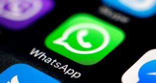pendeteksi spam whatsapp