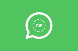 Fitur WhatsApp Yang Memungkinkan Untuk Mengunduh GIF Sebelum Mengirimnya